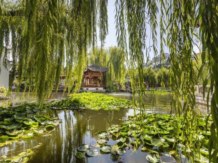 chinese of garden frienship - taman australia - sydney - australia - keliling asia.jpg