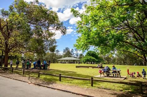parramata park - keliling asia - australia - sydney.jpeg